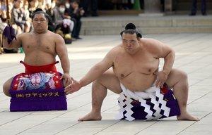 Kisenosato debutó en el sumo profesional en marzo de 2002.