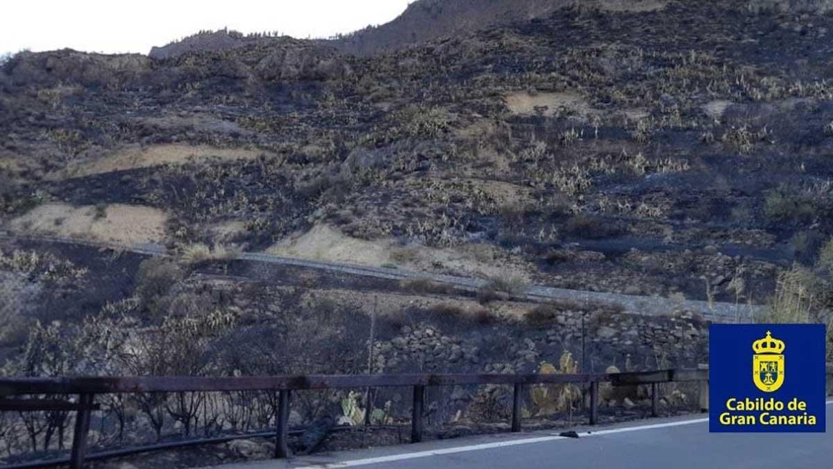 Un millar de personas permanecen desalojadas por el incendio de Gran Canaria.