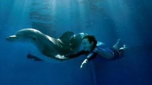 Una secuencia de la película La gran aventura de Winter el delfín.