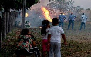 Se extienden los incendios forestales en la región del Pantanal, en Brasil.
