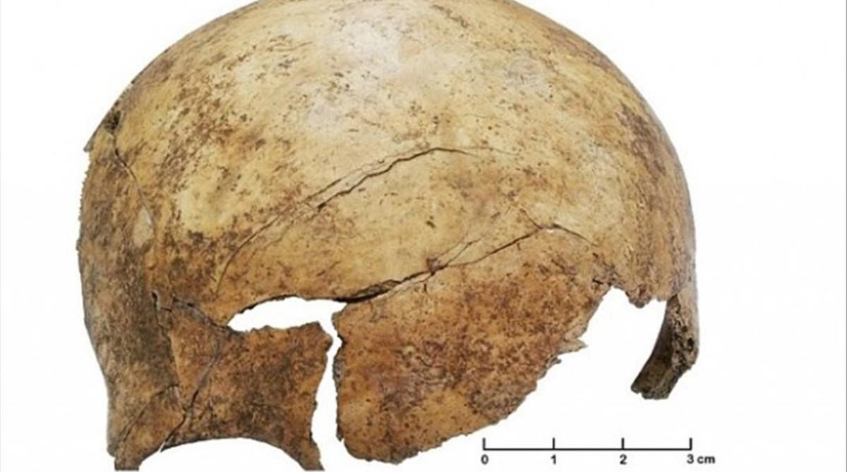 Cráneo de un niño del Paleolítico con un golpe violento.