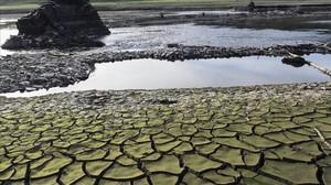 El Govern es planteja restriccions d'aigua a partir del 2018 si no plou