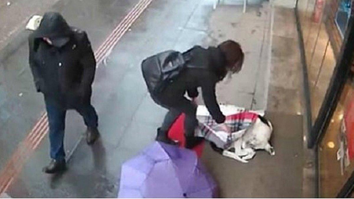 Una dona tapa un gos de carrer que s'estava gelant amb la seva bufanda