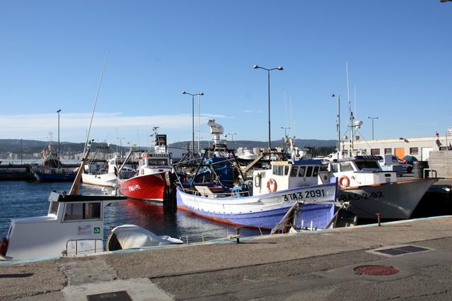 Barques de pescadors amarrades al port de Palamós. De les 27 barques, només 3 han pogut sortir a pescar.