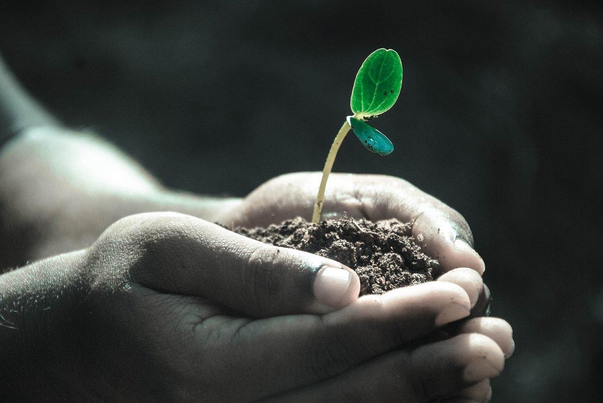 El Escaparate #PorElClima es un agregador de productos que cumplen ciertos requisitos de sostenibilidad.
