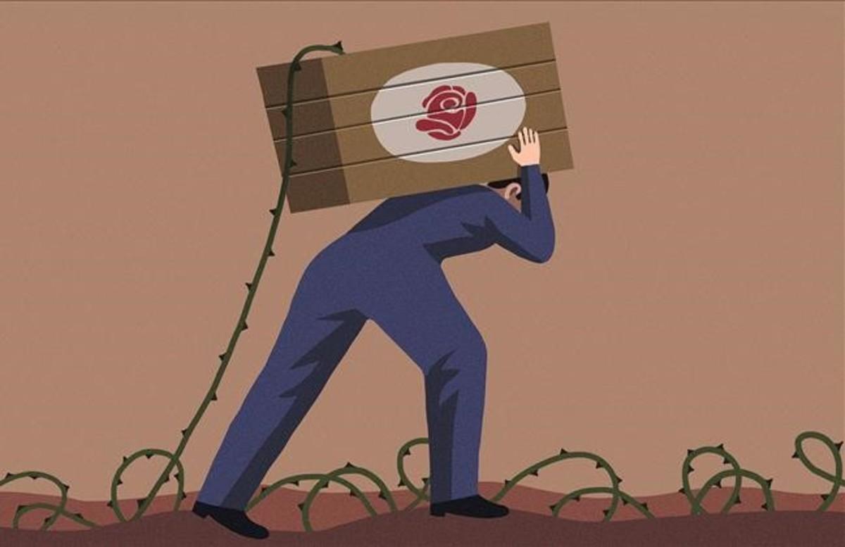 Quan les roses amaguen espines