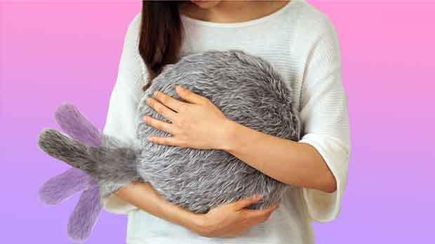 ¿Quién quiere una mascota teniendo este cojín?.