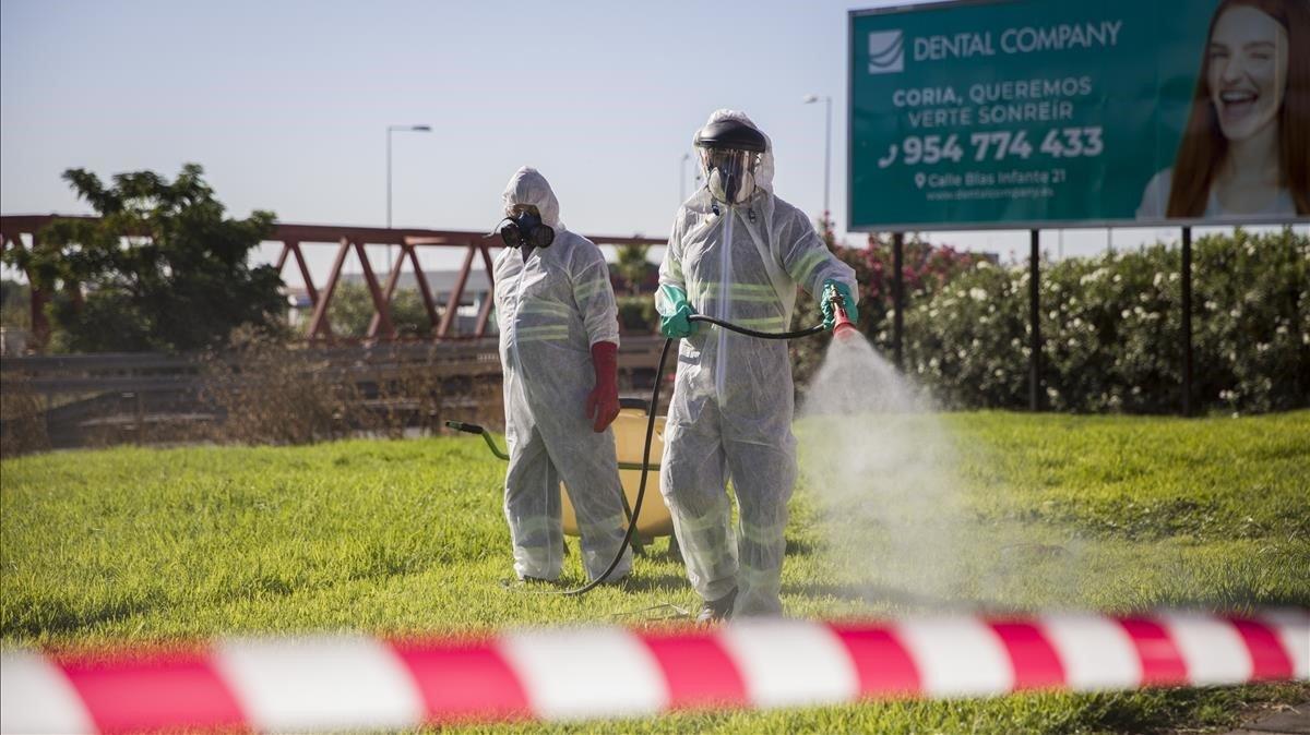 Trabajadores fumigan los mosquitos causantes del virus del Nilo en Coria del Río (Sevilla), el pasado 17 de agosto.