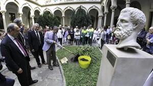 La UB planta un descendent de l'arbre d'Hipòcrates