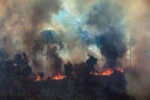 La Amazonía brasileña registró los meses de agosto y septiembre sus peores incendios en más de una década.