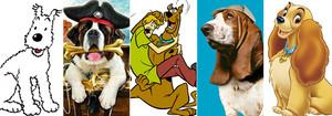 Tintín pagaría un 21% más por asegurar a Milú que Shaggy por Scooby Doo