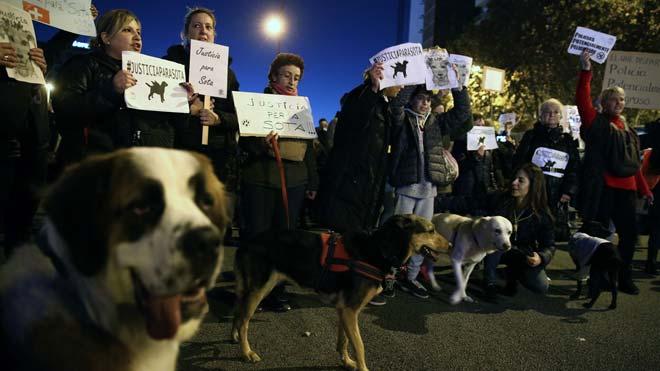 Manifestación por la ejecución de la perra Sota.