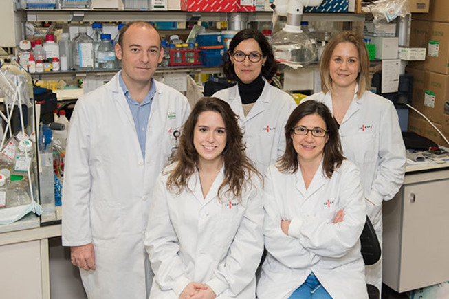 Las investigadoras Marta Moreno y Núria de la Iglesia, con su equipo en el Institut dInvestigacions Biomèdiques August Pi i Sunyer (Idibaps)