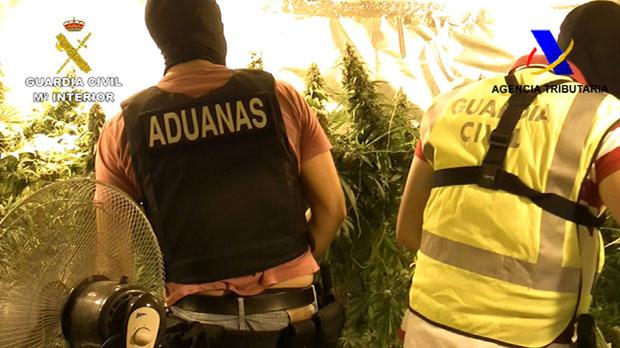 La Guardia Civil y la Agencia Tributaria han desarticulado una organización criminal dedicada al tráfico internacional de marihuana.