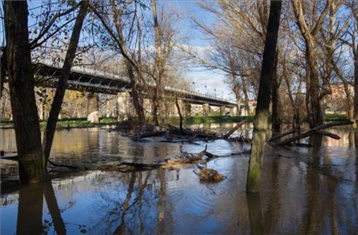 El Gobierno de Aragón activa la fase de Emergencia Nivel 1 por la crecida del Ebro.