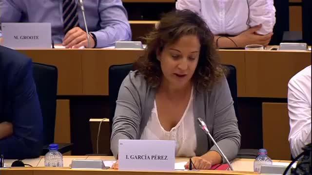 Intervención de la eurodiputada Iratxe García en que carga con dureza contra Arias Cañete.