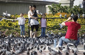 Unos turistas se toman fotografías rodeados porlas palomas de la plaza de Catalunya.