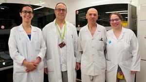 El primer banco de heces congeladas de España está en el Hospital de Bellvitge (Barcelona).