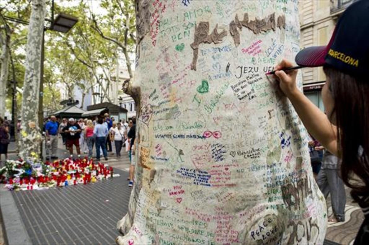 CONSUELO. Una chica escribe un mensaje en uno de los plátanos de la Rambla.