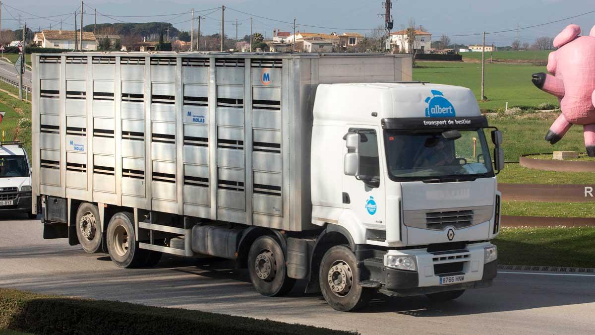 Imagen de un camión circulando.