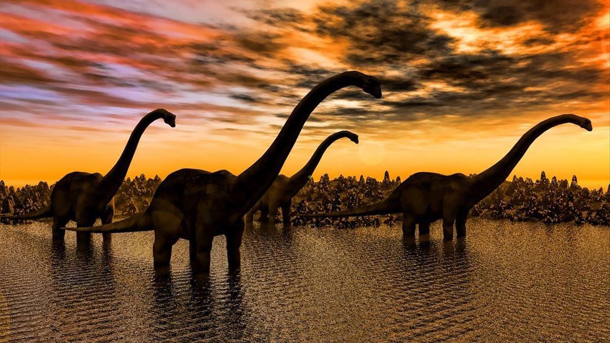 El asteroide que acabó con los dinosaurios acidificó el agua marina