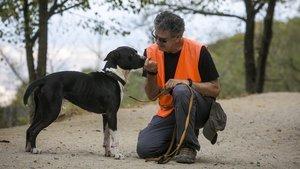 La CUP es desdiu que la gossera sacrifiqués 68 gossos