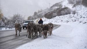 La neu arriba al Pirineu i obliga a utilitzar cadenes a la Vall d'Aran i el Berguedà