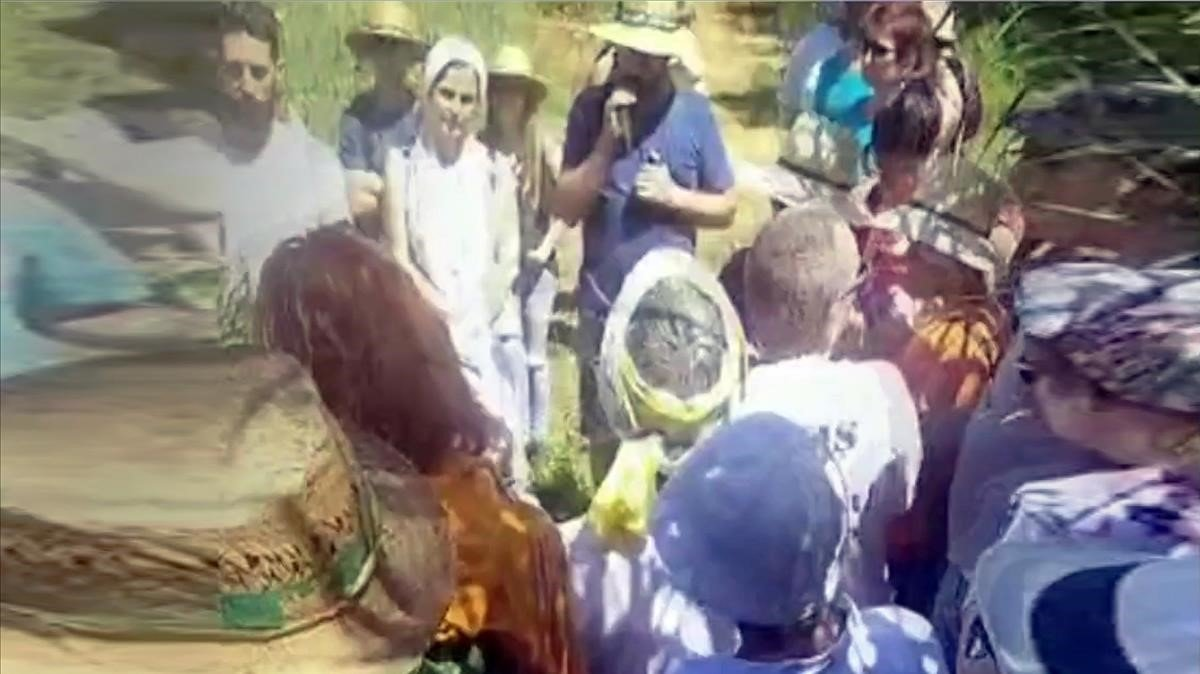 Fotograma de uno de los vídeos difundidos sobre el encuentro de Josep Pàmies y Dolça Revolució de este sábado en Lleida.
