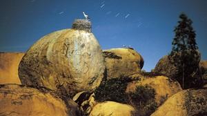 mdeluna9958208 dia por delante exposicion 100 natural de jose benito ruiz160911214109