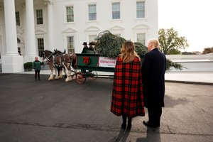 U S  President Donald Trump and first lady Melania Trump receive the official White House Christmas tree at the North Portico of the White House in Washington   REUTERS Kevin Lamarque