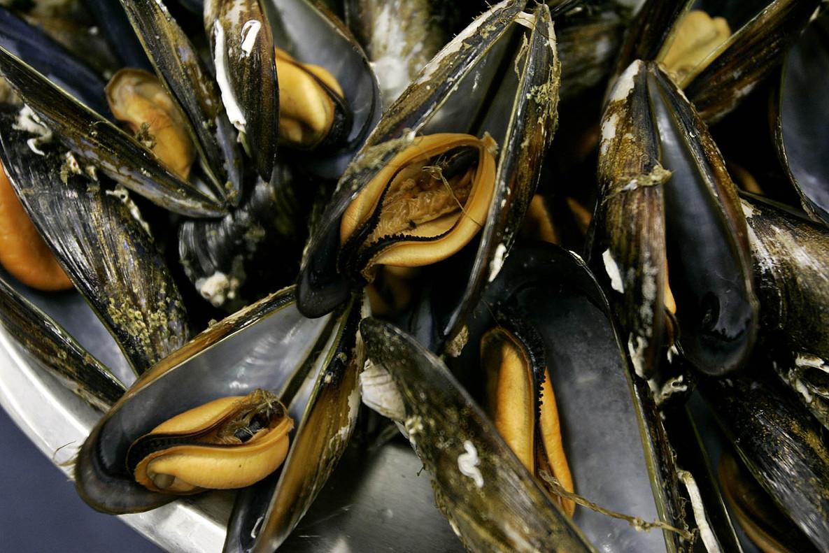 L'OCU troba microplàstics en la majoria d'aliments marins analitzats