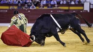 El diestro Miguel Ángel Perera, en la primera corrida de la Feria de Murcia.
