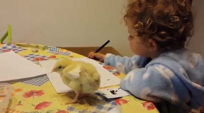 La que has liao pollito es uno de los vídeos más reproducidos en Youtube España.