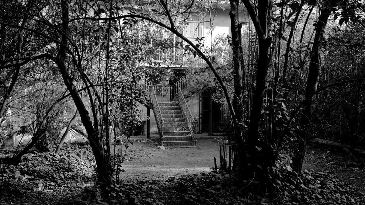 Un jardí i un museu per a la Casa Amatller
