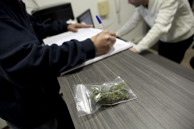 Bolsa de cannabis para uso terapéutico.