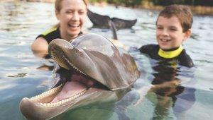 El Discovery Cove forma parte de la cadena de parques temáticos de Sea World Orlando.