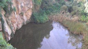El pantà de la Foixarda serà un nou espai de biodiversitat a Montjuïc