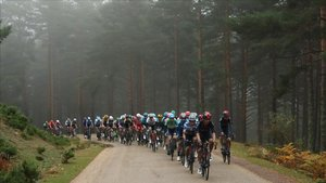 El pelotón de la Vuelta, durante la tercera etapa.