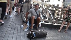 Uno de los individuos que exhiben de manera ambulante perros con fines lucrativos, con un boston terrier en la esquina de la calle Pelai con La Rambla.