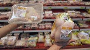 Els brots per infeccions alimentàries en centres d'avis es mantenen