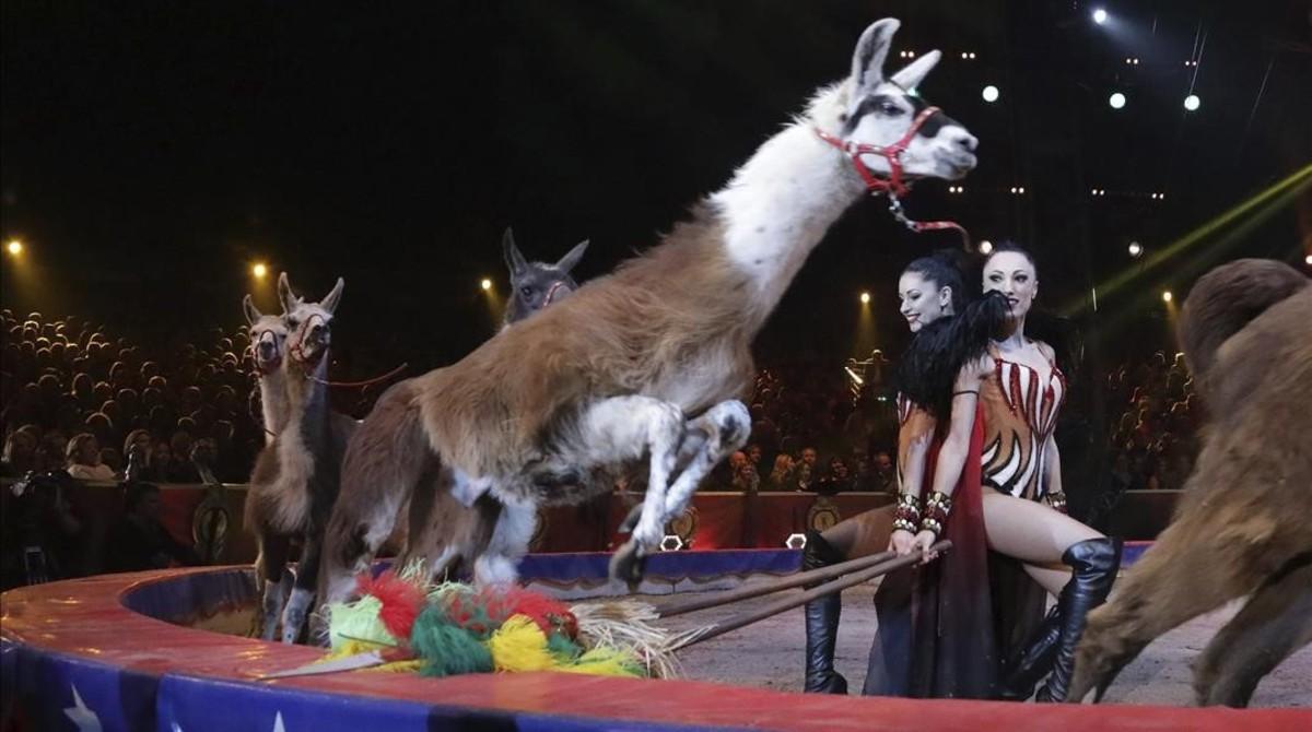 Actuación con llamas en el Festival Internacional de Circo de Montecarlo.
