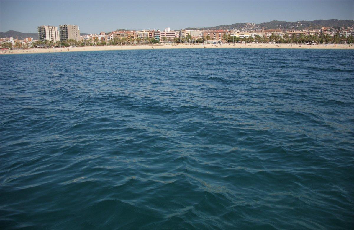 La costa de Mataró, justo encima del área protegida donde está la posidonia.