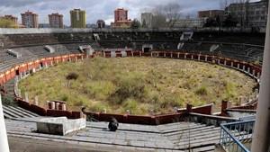 El estado de abandono que sufre la plaza de toros de Oviedo es evidente.