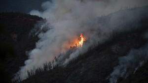 El fuego que arrasa una zona boscosa cerca del parque de Yosemite