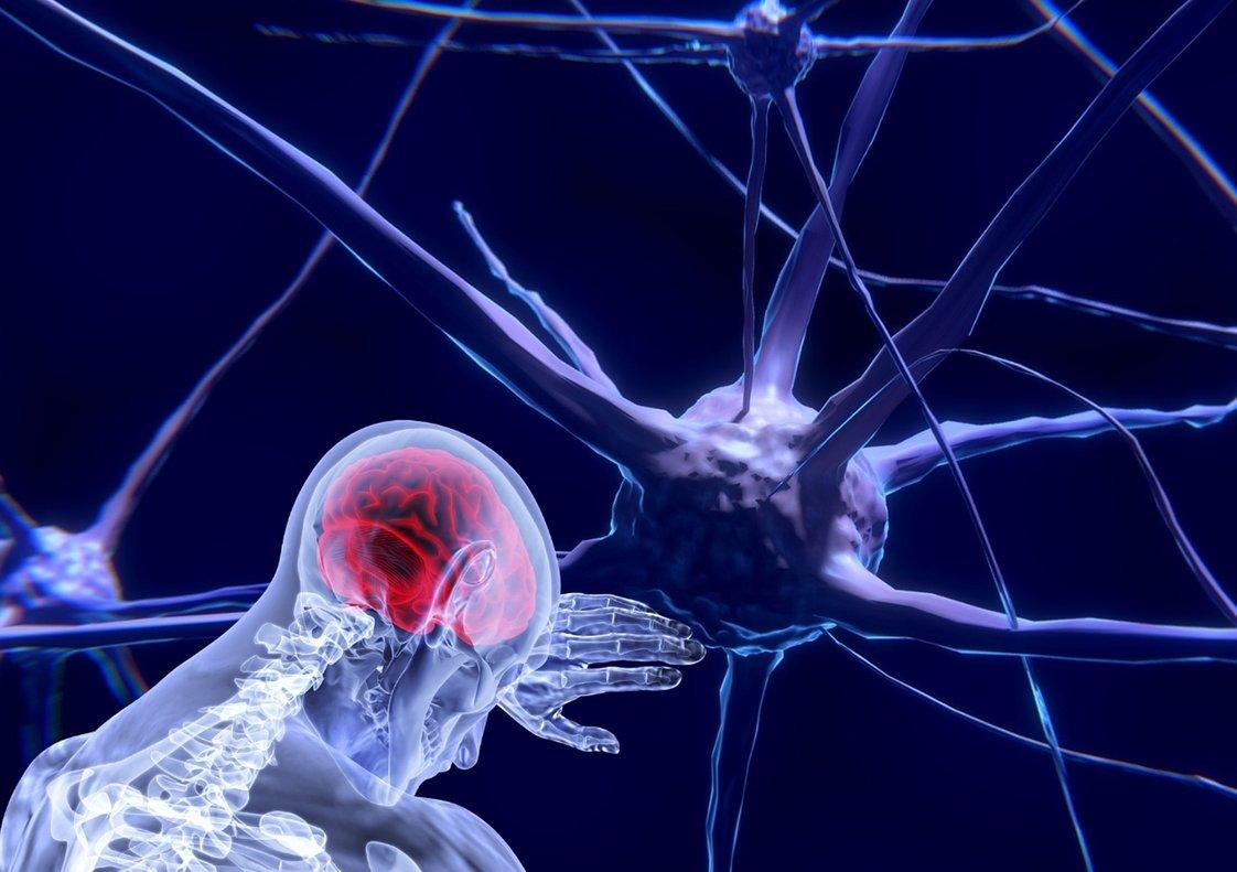 El neurociencia aplicada al marketing permite conocer mejor al cliente