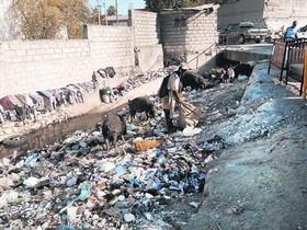 LA POBREZA EN IMÁGENES. La última esperanza de un puertoprincipeño para sobrevivir a la miseria suele ser encontrar algo que pueda venderse entre los ríos y montañas de basura de la ciudad.