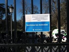"""Madrid adelantó el cierre del Retiro """"aunque la previsión no era de alerta"""" y el pino se revisó el jueves"""