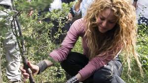 Shakira planta un árbol en la reserva de cedros de Tannurin, en Líbano