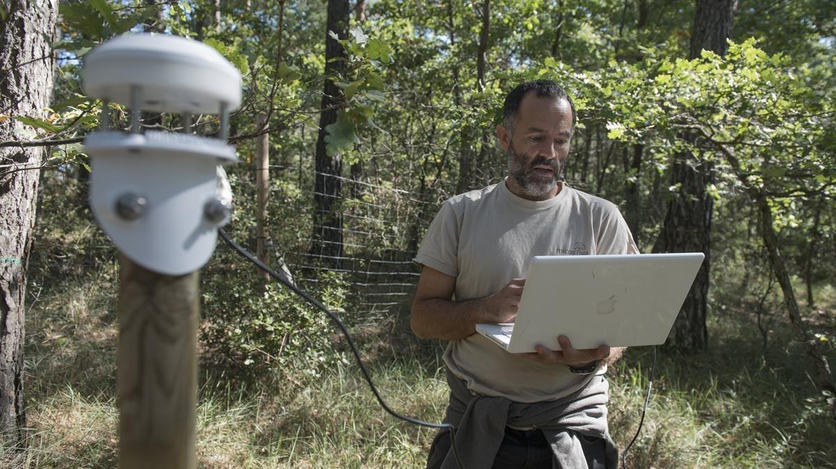 El ingeniero forestalJuan Martínez de Aragón, del CTFC, durante una visita a una de las parcelas analizadasen el municipio de Lladurs, el pasado viernes.
